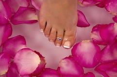 Avere trattamento della stazione termale con acqua minerale ed i petali di rosa lillà-dentellare colorati luminosi Fotografia Stock