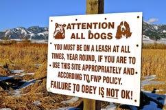 Avertissement de signe de chien Images libres de droits