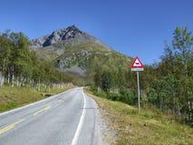 Avertissement scénique de route et de renne Photos stock