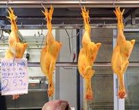 Aves domésticas de suspensão Fotos de Stock