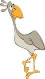 Avestruz. Desenhos animados ilustração do vetor