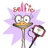 Avestruz sonriente linda y fondo y selfie púrpuras libre illustration