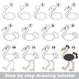 Avestruz Tutorial del dibujo ilustración del vector