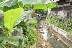 Avfall i kanalisering i Manokwari Royaltyfri Bild
