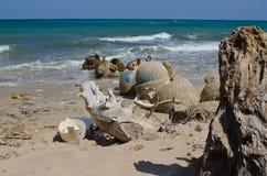 Avfalls ackumulerar på stranden royaltyfri bild