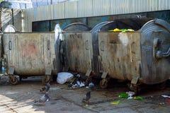 Avfallscontainrar som är fulla med avskräde i en stad Fotografering för Bildbyråer