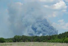 Avfyra i skogen Arkivfoton