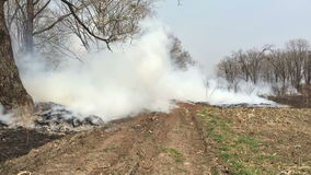 Avfyra i träna med en stark rök lager videofilmer