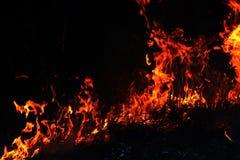 Avfyra skogsbrand på natten, fokus för brinnande hö för brand selektiv royaltyfri fotografi