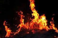 Avfyra skogsbrand på natten, fokus för brinnande hö för brand selektiv royaltyfri bild