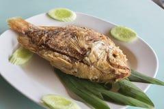 Avfyrad fisk med fishsauce Arkivbild