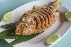 Avfyrad fisk med fishsauce Arkivfoto