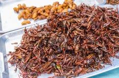 Avfyrade gräshoppor och avmaskar på matmarknaden, Bangkok Fotografering för Bildbyråer