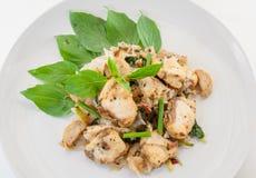 Avfyrade tunna nudlar med fisken och soya, thai stilmat royaltyfri foto