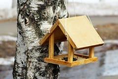 Aviário na árvore de vidoeiro Caixa de assentamento em uma árvore em um parque, mola imagem de stock royalty free
