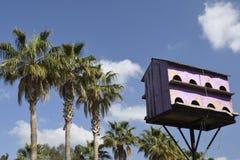 Aviário no rosa com os dezesseis apartamentos contra o céu azul foto de stock royalty free