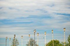 Aviários de madeira das caixas de assentamento na pensão do ` s do pássaro do céu azul Muitas casas do pássaro em uma árvore Conc Fotografia de Stock