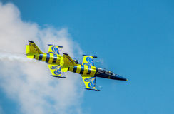 Avião Báltico da abelha Fotos de Stock Royalty Free
