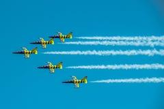 Avião Báltico da abelha Foto de Stock