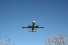 Avião comercial da linha aérea que vem dentro sobre árvores Fotografia de Stock