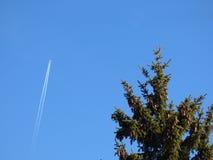 Avião do vôo Imagens de Stock