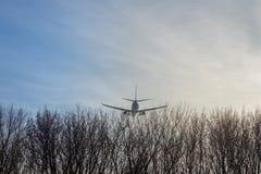 Avião grande do passageiro que voa baixo sobre árvores de floresta contra o céu azul claro durante o por do sol Aterrar ou decola foto de stock royalty free