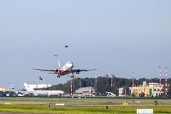 Avião na decolagem e nos pássaros Fotografia de Stock Royalty Free