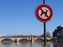 Aviñón, santo Benezet - puente, Francia de Pont Foto de archivo