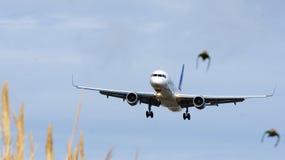 Avión comercial que vuela sobre el delta del Llobregat Imagenes de archivo