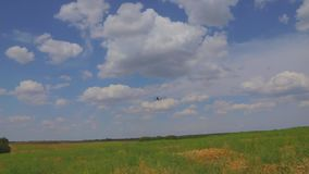 Avión del vuelo en el cielo metrajes