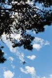 Avión y árbol de aterrizaje imágenes de archivo libres de regalías