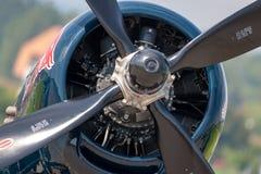 Aviões de lutador OE-EAS do vintage da segunda guerra mundial do corsário de Vought F4U-4 da coleção de voo dos touros imagens de stock