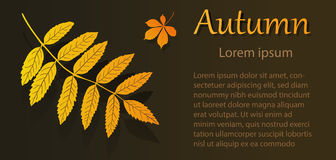 Aviador del otoño con la hoja del serbal ilustración del vector