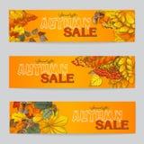 Aviador tres de la venta del otoño con las hojas de otoño Fotos de archivo