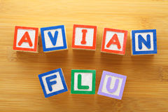 Avian flu toy block Royalty Free Stock Image