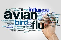 Avian flu word cloud concept on grey background.  Stock Image