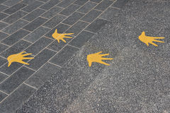 Avian Footmarks. On A Walking Path Royalty Free Stock Photography