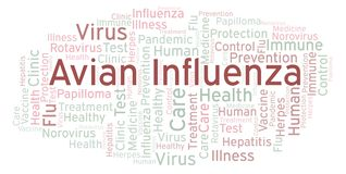 Avian Influenza word cloud, made with text only. Avian Influenza word cloud, made with text only stock illustration