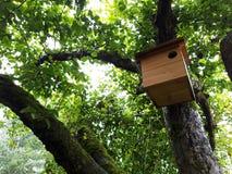 Aviario in albero Immagini Stock