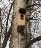 Aviario, alimentatore dell'uccello, aiuto dalla gente durante immagini stock