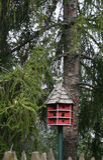 Aviario ed albero Fotografie Stock Libere da Diritti