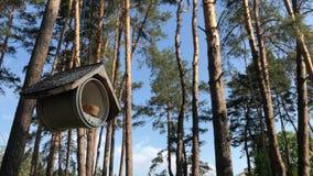 Aviario su un albero nel parco L'alimentatore dell'uccello appende su un albero archivi video