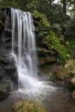 Aviary Falls - Rainbow Springs State Park Stock Image