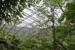 Aviary Royalty Free Stock Photo