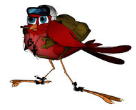 Aviator. This is an art-piece I call Aviator, it's a red bird with flight gear on it. Ready for flight vector illustration