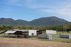 Aviculture organique dans l'Australie photos libres de droits