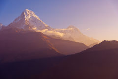 AView of Annapurna and Machapuchare peak at Sunrise from Poon Hill, Nepal. royalty free stock photos