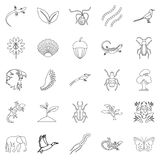 Avifauna icons set, outline style. Avifauna icons set. Outline set of 25 avifauna vector icons for web isolated on white background Stock Photography