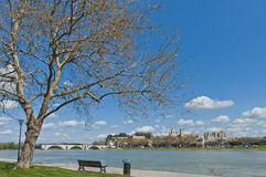 Avignon across Rhone River, France Royalty Free Stock Image