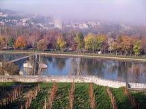 Avignon in autumn. Avignon: the Bridge of St.-Benezet in a foggy day on autumn Stock Images